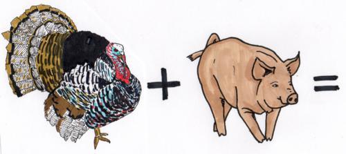 Truthahn + Schwein = ? © Antje Sachwitz