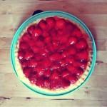 Erdbeerkuchen-Tortenboden-Vanillepudding